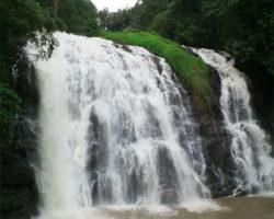 coorg1 ed